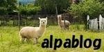 alpaca-2907771__480.jpg